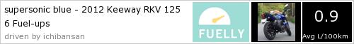 Média de consumos / velocidade / despesas manutenção RKV 125 124262