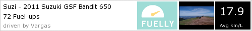 FILTRO DE AR K&N + VELAS CR8EIX IRIDIUM +ÓLEO GULF SINTÉTICO 613146